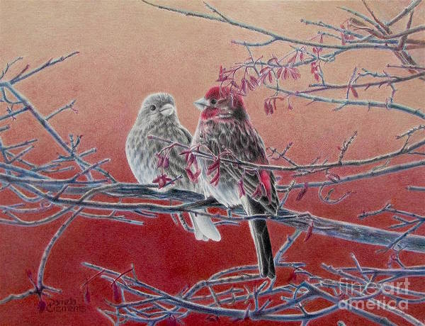 Painting - Forever Finch by Pamela Clements