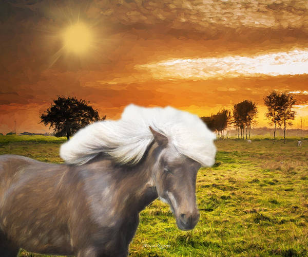 Photograph - Forever Wild And Free by Ericamaxine Price