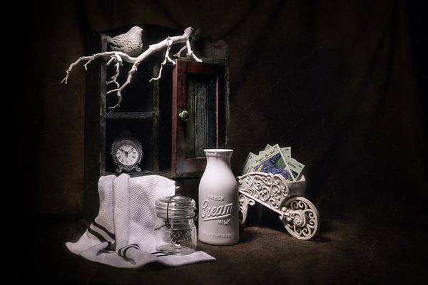 Shelves Photograph - Forget Me Not Still Life by Tom Mc Nemar
