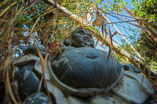 Buddah Photograph - Forget Your Barred Caged Enlightenment Or Rub The Belly Buddah Under The Ladder by Toby McGuire