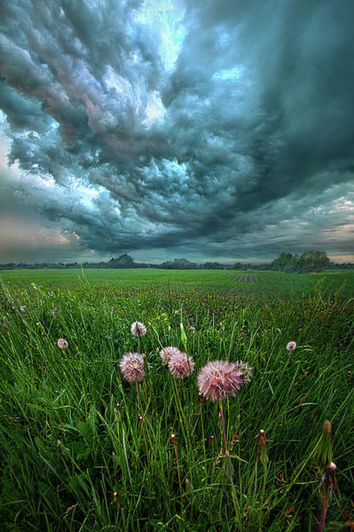 Photograph - Forgive Us Our Trespasses by Phil Koch