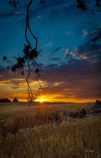 Photograph - Forgiveness by Tim Bryan