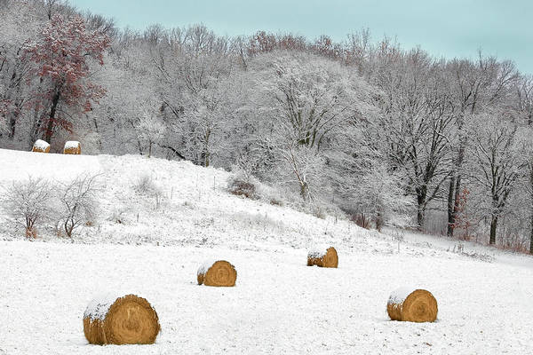 Photograph - Forgotten Bales by Todd Klassy
