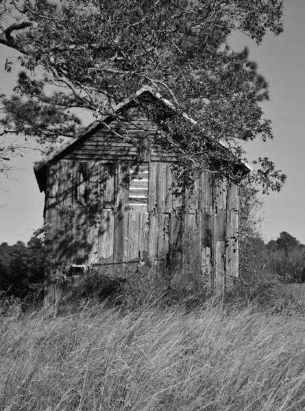 Photograph - Forgotten Barn by Cynthia Guinn