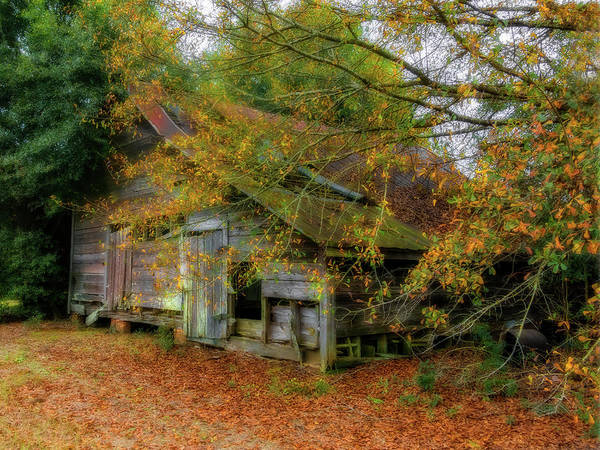 Photograph - Forgotten Barn by Kay Brewer