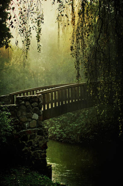 Nature Wall Art - Photograph - Forgotten Bridge by Jaroslaw Blaminsky