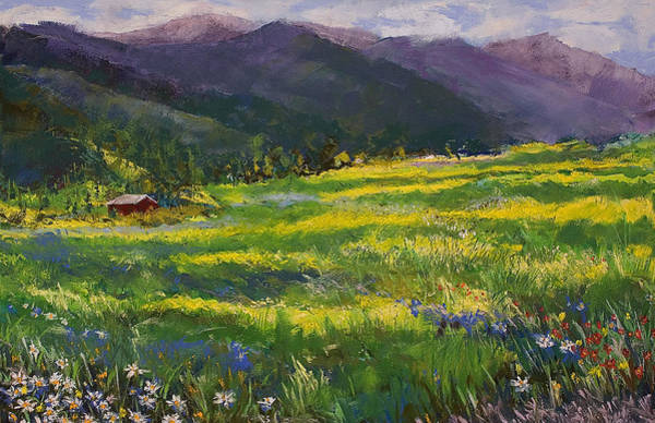 Pastel - Forgotten Field by David Patterson