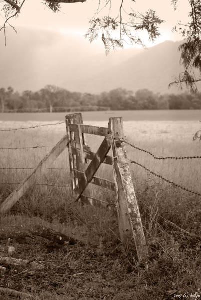Wall Art - Photograph - Forgotten Fields 2 by Holly Kempe