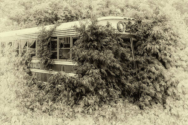 Photograph - Forgotten In Black And White by Susan Rissi Tregoning