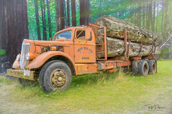 Photograph - Forgotten Load by Bill Posner