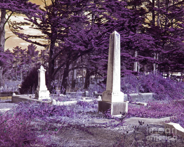 Half Moon Bay Photograph - Forgotten Monuments by Laura Iverson