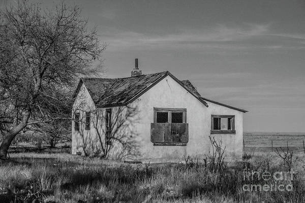 Photograph - Forgotten On The Plains by Tony Baca