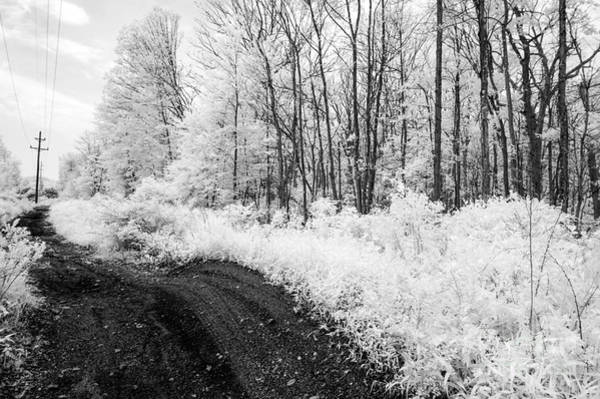 Photograph - Forgotten Pathways by Anthony Sacco