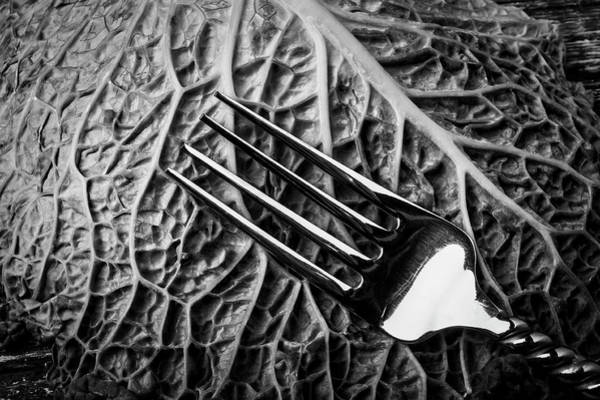Cabbage Photograph - Fork And Cabbage Leaf by Garry Gay