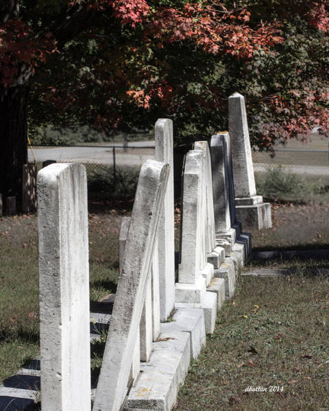 Wall Art - Photograph - Forside Cemetery 1 by Dick Botkin