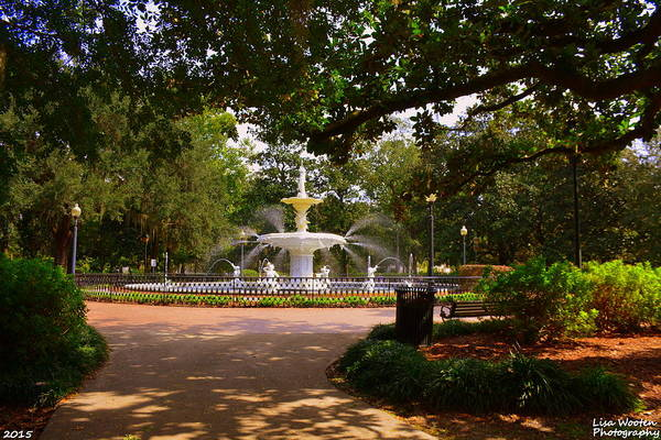 Photograph - Forsyth Park by Lisa Wooten