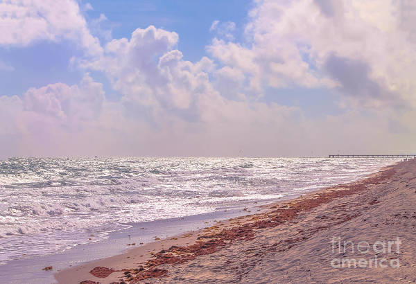 Flagler Photograph - Fort Lauderdale In December by Claudia M Photography