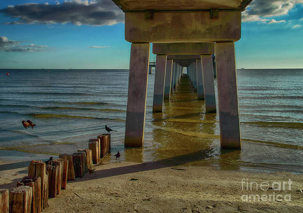 Photograph - Fort Myers Beach by Judy Hall-Folde