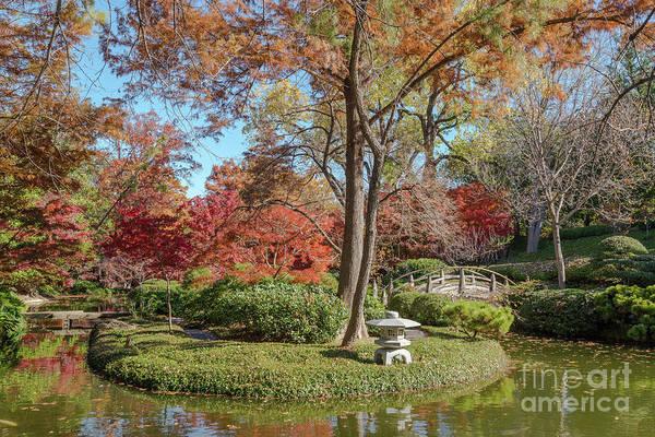 Photograph - Japanese Gardens 2 by Paul Quinn