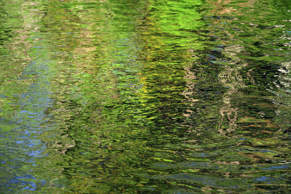 Photograph - Forty Shades Of Green 1. Water Abstract by Jenny Rainbow