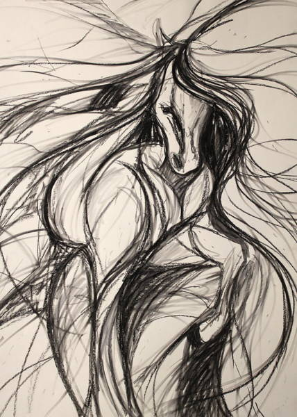 Warmbloods Drawing - Forward Movement In Black And White by Jennifer Fosgate