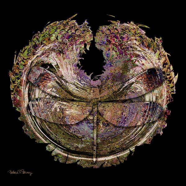 Digital Art - Fossil by Barbara Berney