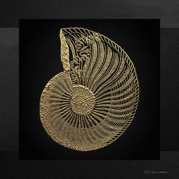 Digital Art - Fossil Record - Golden Ammonite Fossil On Square Black Canvas #1 by Serge Averbukh