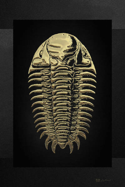 Digital Art - Fossil Record - Golden Trilobite On Black No. 3 by Serge Averbukh