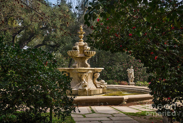 Wall Art - Photograph - Fountain Beyond The Trees by Jamie Pham