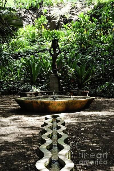 Allerton Garden Photograph - Fountain by Leah Toletti