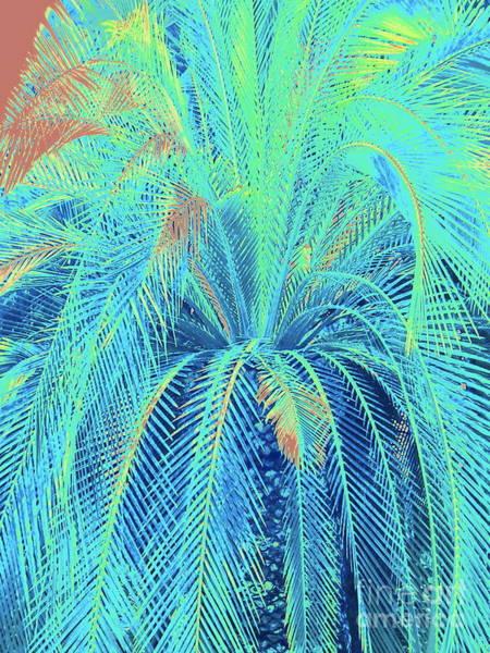 Palm Frond Digital Art - Fountain Of Life by Jane Gatward