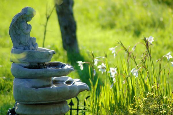 Photograph - Fountain by Sam Davis Johnson