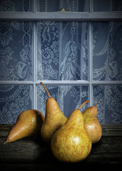 Photograph - Four Bartlett Pears By A Window With Curtain Lace by Randall Nyhof