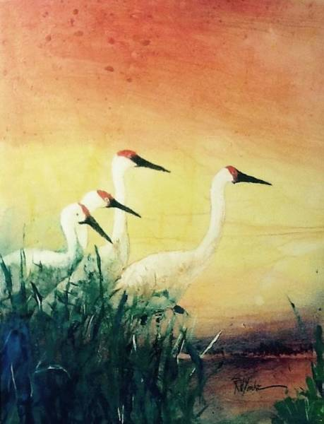 Marsh Bird Painting - Four Bills by Robert Yonke