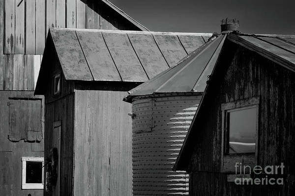 Photograph - Four Farm Buildings Black And White by Karen Adams