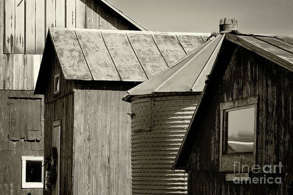 Photograph - Four Farm Buildings Sepia by Karen Adams