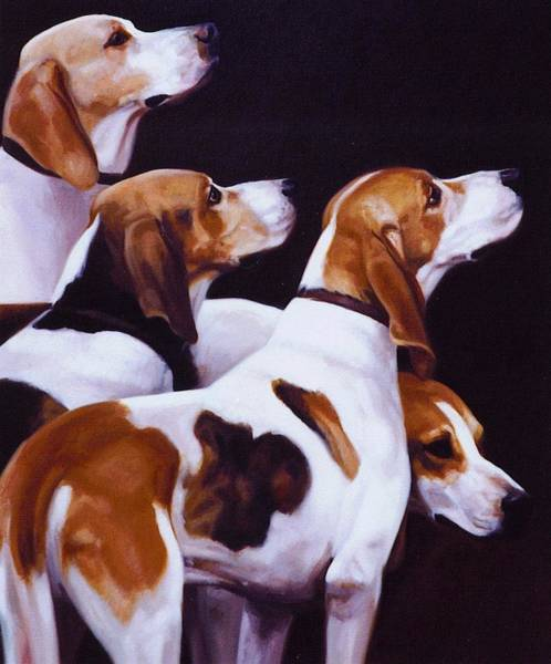Hound Painting - Four Fox Hounds by Janet  Crawford