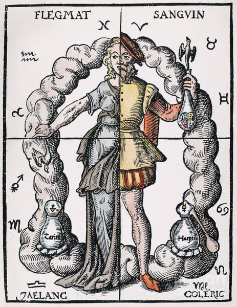German Renaissance Drawing - Four Humors by Granger