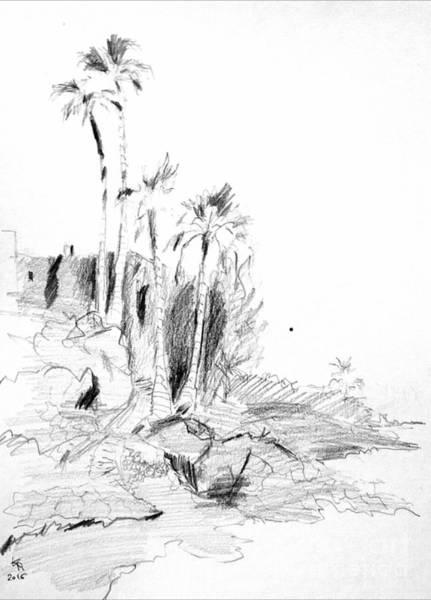 Drawing - Four Palms  by Karina Plachetka