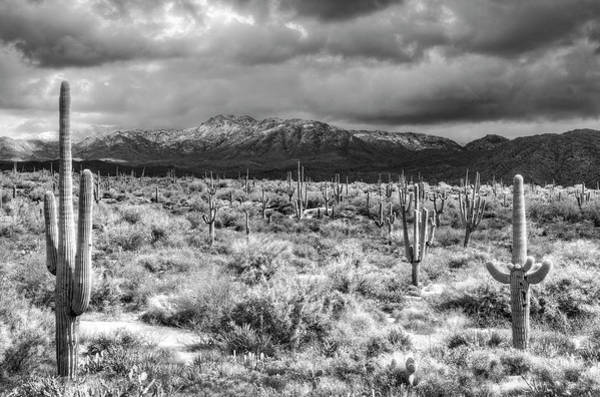 Wall Art - Photograph - Four Peaks Wilderness Snow In Black And White  by Saija  Lehtonen