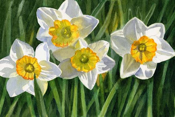 Daffodils Wall Art - Painting - Four Small Daffodils by Sharon Freeman