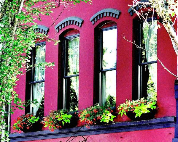 Photograph - Four Windows by Jerry Sodorff
