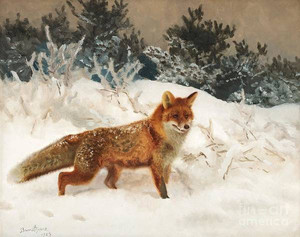 Painting - Fox In Winter Landscape by Celestial Images