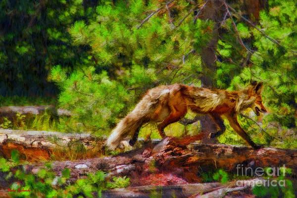 Photograph - Fox On A Log by Blake Richards