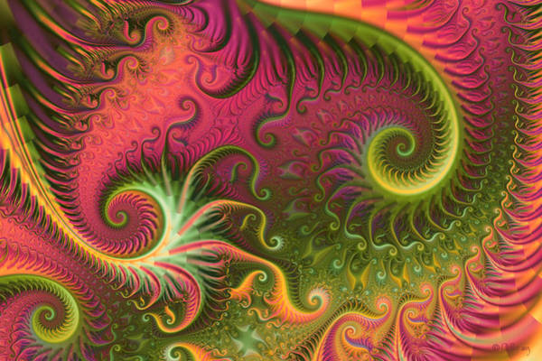 Digital Art - Fractal Ameba by Digital Art Cafe