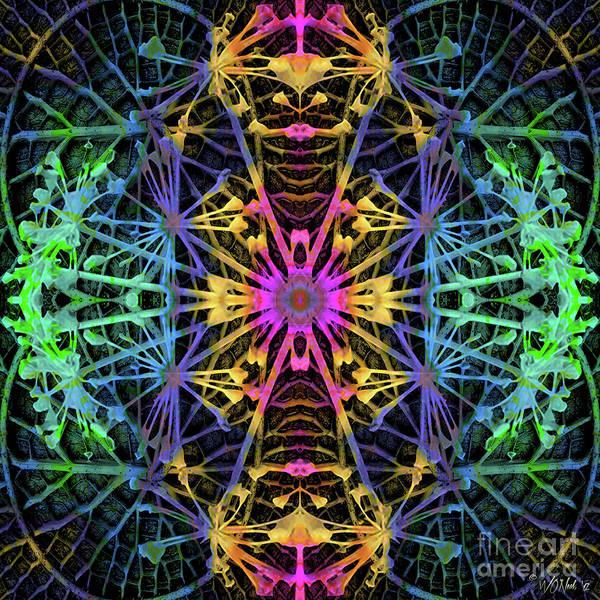 Digital Art - Fractal Harmony 1c by Walter Neal