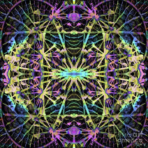 Digital Art - Fractal Harmony 1a by Walter Neal