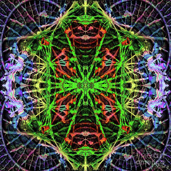 Digital Art - Fractal Harmony 1f by Walter Neal