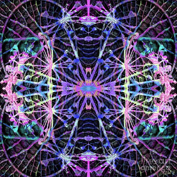Digital Art - Fractal Harmony 1e by Walter Neal