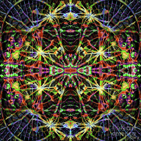 Digital Art - Fractal Harmony 1d by Walter Neal